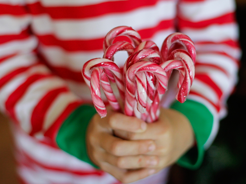 A child holds a bunch of striped candy canes